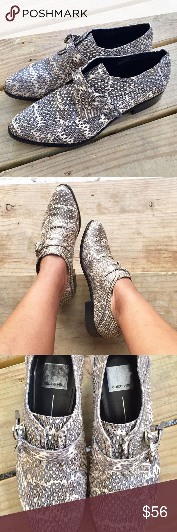 Dolce Vita Python Print Shoes!! Casual oxford style shoes with trendy python print and top buckle!! Gently used condition!! Dolce Vita Shoes