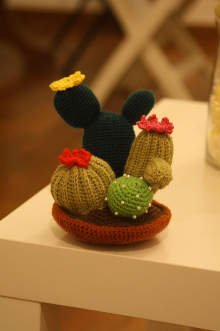 Crochet succulents.... for my sister's birthday! Stella