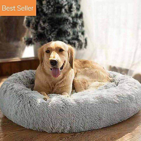 Pet Beds Online Store From Hooman In 2020 Cool Dog Beds Round Dog Bed Calm Dogs