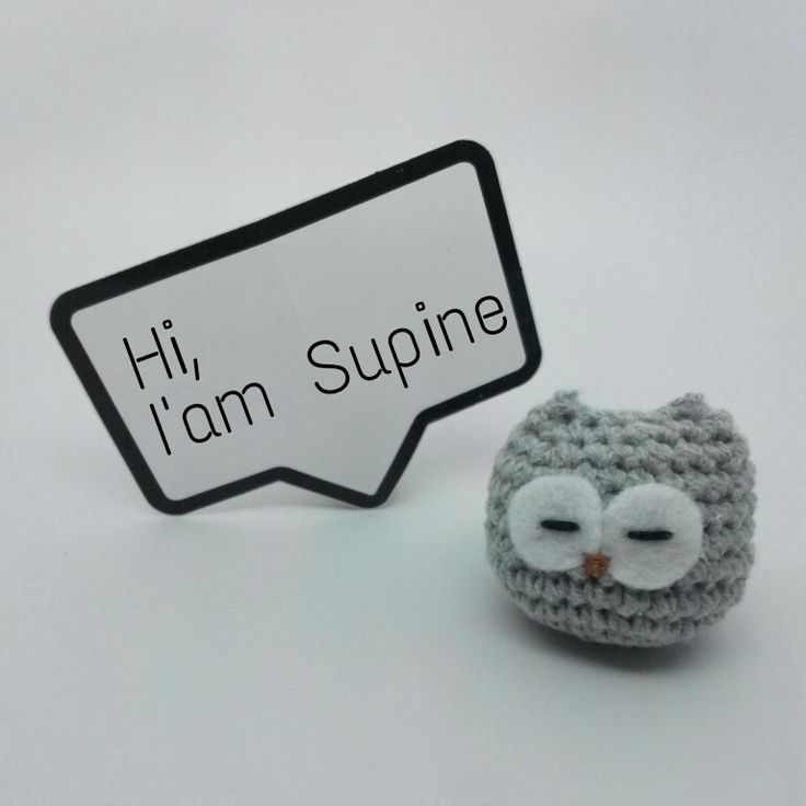 Session 4 (Special Edition)  The Owl ❤ Charm • Made by order • Crocheting Project with Flanel