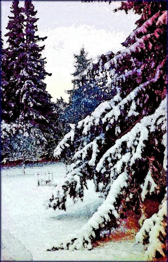 Beautiful Winter Wonder Artwork Digital Art by MissDawnFineArt, $2.50