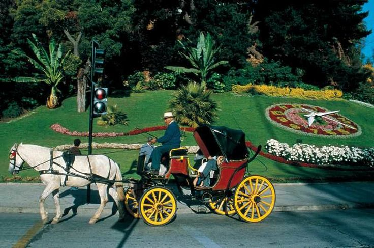 "Known as the ""Garden City"", Viña del Mar is considered the tourist capital of Chile, due to its strategic geographical location, very close to the capital of the country. Seat of the International Song Festival, Viña del Mar lies 120 kilometers from Santiago along Route 68 and 9 kilometers away from Valparaíso along the coastline road. From Argentina, this magnificent seaside destination is reached through Los Libertadores International Pass."