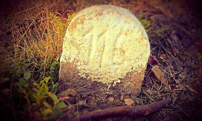 Kamień z liczbą 116