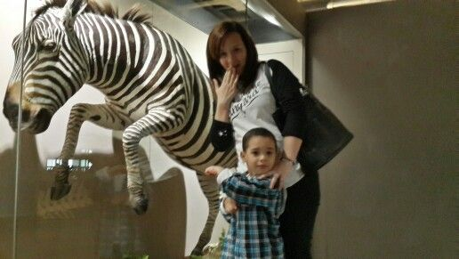 Look Mom Zebra!!!!