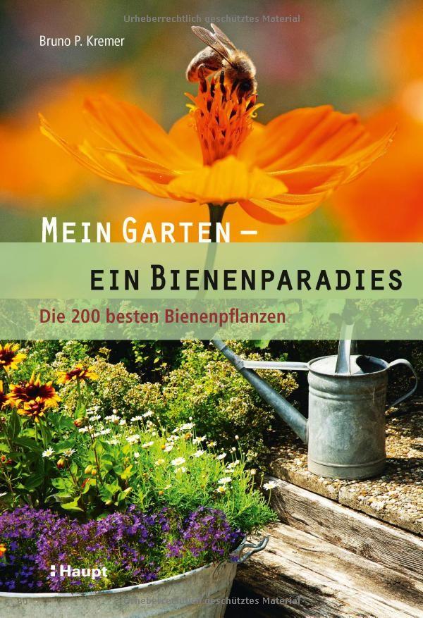 Spectacular Mein Garten ein Bienenparadies Die besten Bienenpflanzen Amazon de Bruno