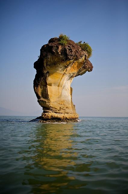 Bako National Park, Sarawak, Malaysia.