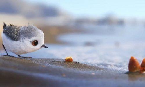 60 cortometrajes para educar en valores