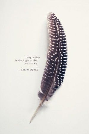 feather, quote © sirka hiltner photography | http://society6.com ...