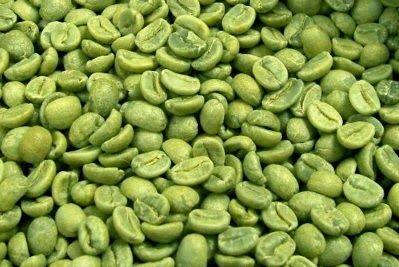 Granos de Cafe Verde Para Bajar de Peso! Conoce este milagroso descubrimiento que causa furor!