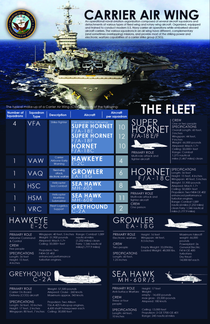 An infographic depicting the composition of an aircraft carrier strike group.