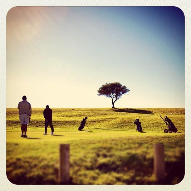 Bondi Golf...surely one of the most picturesque courses to play up on the ocean cliffs! #golf #atbondi #bondi #sydney #australia #cliffs #sport
