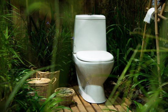 urine as fertilizer