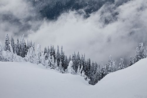 Lee Rentz  Unsettled Winter Weather at Hurricane Ridge, Olympic National Park