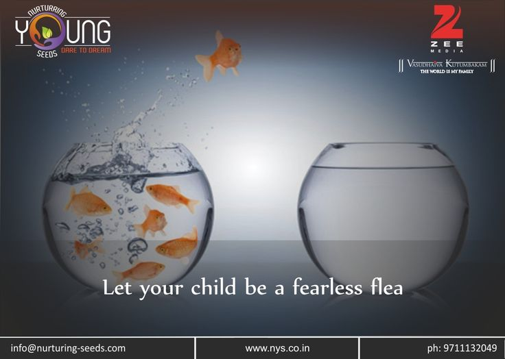 Let Your #Child Be a Fearless Flee !!! To grow in life, everyone needs a certain space to let themselves experience a roller coaster of good and bad times. Due to this they would know about their strengths and weaknesses..... Read more at: http://bit.ly/2kmrdyG