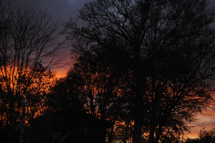 Sunset in Tennessee Nov 19, 2012