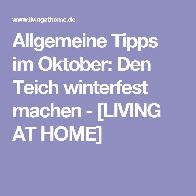 Allgemeine Tipps im Oktober: Den Teich winterfest machen - [LIVING AT HOME]