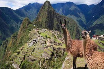 8-Day Machu Picchu and Lake Titicaca Tour from Lima - Lima | Viator