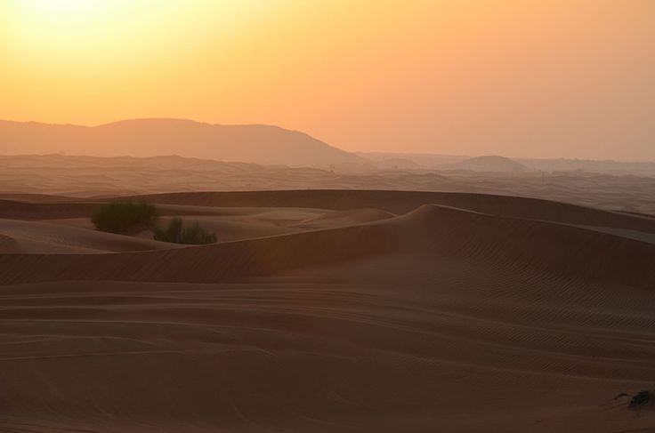 Dubai. An Experience In The Desert