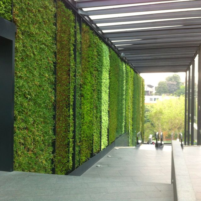 Jardín vertical / vertical garden @ Sta. Fe Como me gustan estos jardines verticales le dan mucha vida a la ciudad