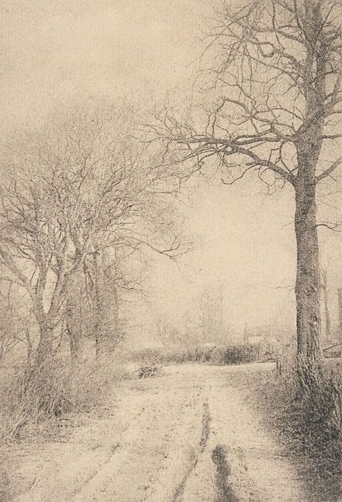 liquidnight:  Robert Demachy  Winter's charm, circa 1910  Bromoil photograph  [From the Art Gallery of New South Wales]