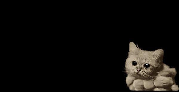 El desván del Freak: El Gato - Humo (ANIMACIÓN)