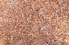 Die Verwendung von Rindenmulch im Garten ist sehr beliebt. In der Kombination mit Zeitung unter dem Mulch entsteht eine hohe Wirkkraft gegen Unkraut.