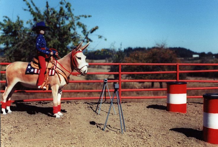 Breyer Racing Scenes | Stock breeds usually dominate in barrel racing, but any breed or mixed ...