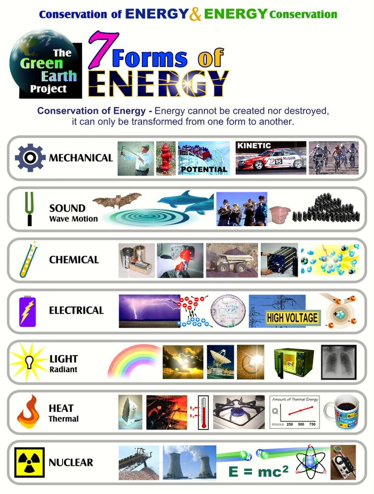 Google Image Result for http://www.greenearthproject.com/Forms28xllb.jpg