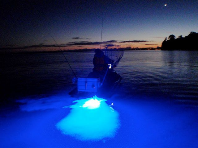 Under water lights available at www.maverickfishhunter.com