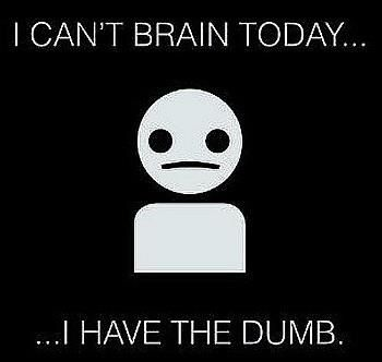 I can't brain today... I have the dumb.: Dumb, Quotes, Can T Brain, Funny Stuff, Humor, Case, Brain Today