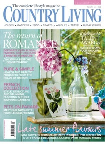 I love Country Living magazine!: Favorite Things, Favorite Magazines, Country Girl, Country Magazines, Country Living Magazine, Book, Me Countryliving Dreambedroom