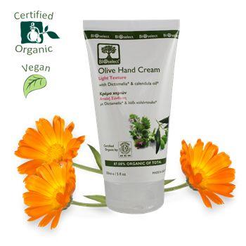 Olive Hand Cream / Light Texture