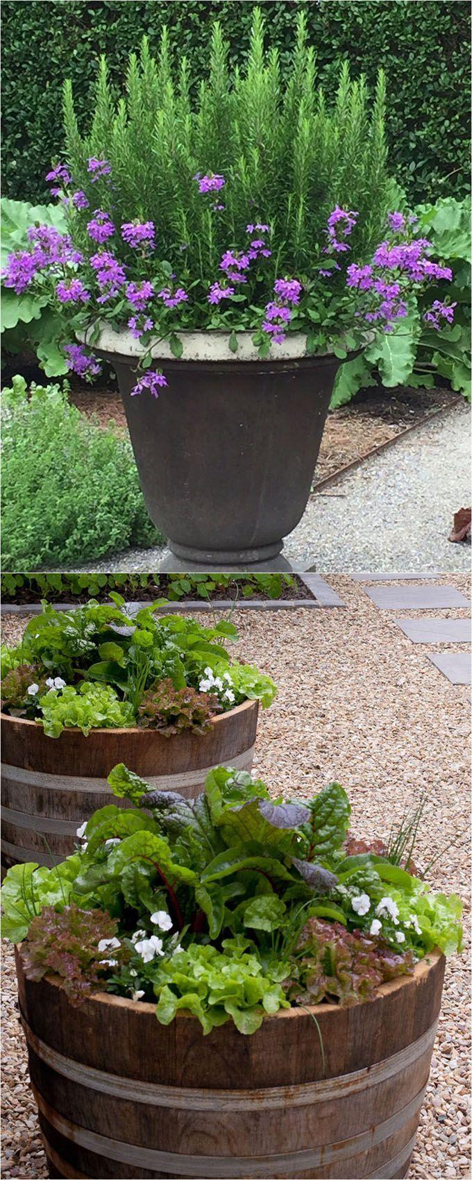 De 20 bedste id er inden for blomsterkrukker p pinterest for Perennial container garden designs