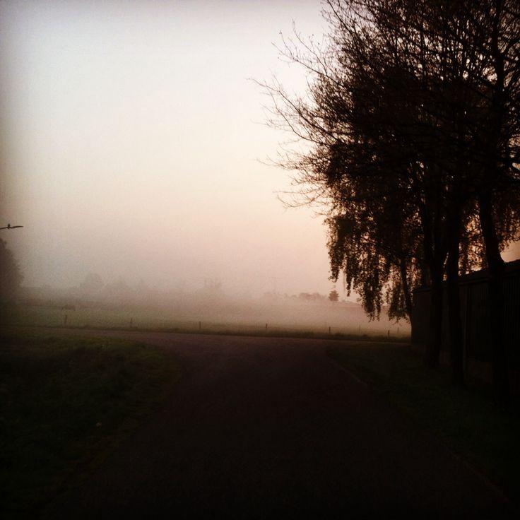 Misty crossroads