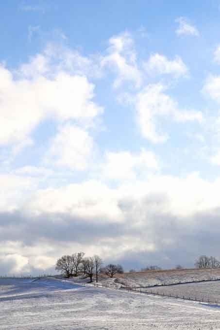 East Gwillimbury CameraGirl