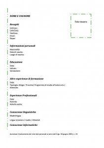 Curriculum Vitae - Modello 03 : Modello Curriculum