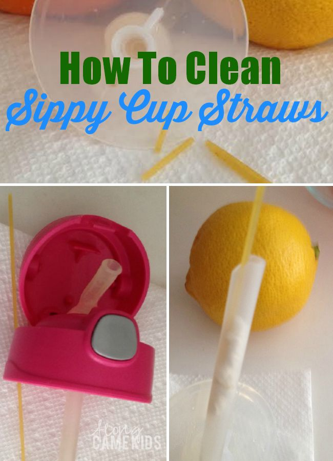 How to Clean a Sippy Cup Straw | AlongCameKids.com