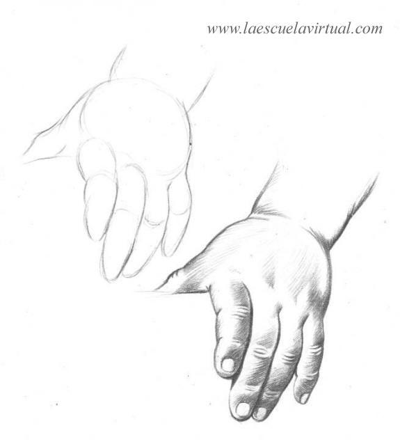 Como Dibujar Las Manos Parte 2 Tutorial Gratis Curso Online How To Draw Hands Drawing Draw Dibujo Lapiz Dedos Manos Dibujo Como Dibujar Aves Dibujo Nariz