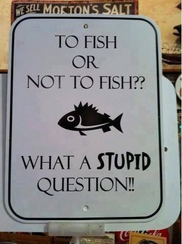 to fish or not to fish.  http://mrdungenesscrabber.com/  what a stupid question. -Crabber
