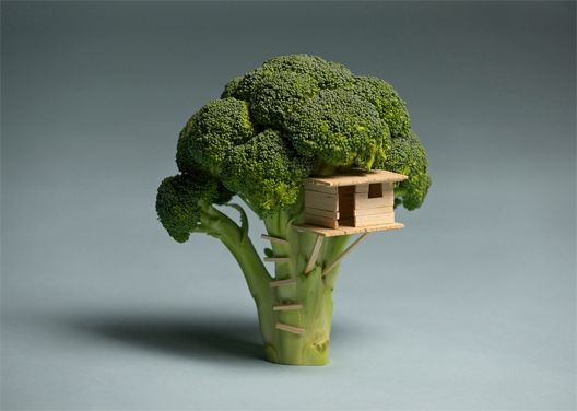"""Broccoli House by artist and musician Brock Davis. The house is made out of broccoli, balsa wood, a craft knife and glue.    He says, """"I couldn't build a tree house for my son so I built him a broccoli house instead."""": Idea, Brock Davis, Tree Houses, Trees, Broccoli House, Food Art, Broccoli Treehouse, Treehouses, Broccolitree"""