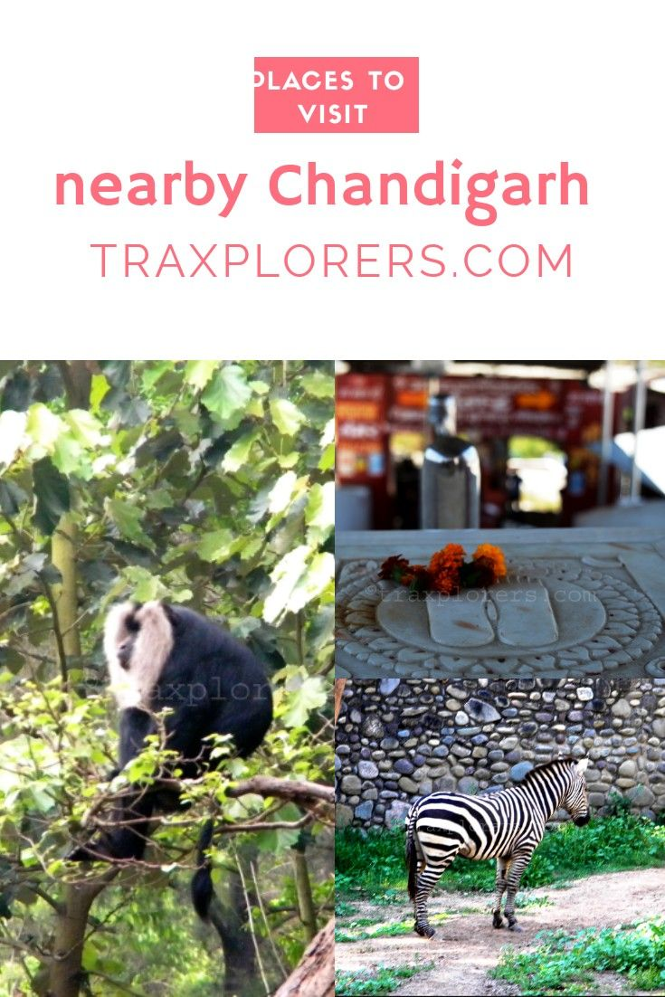 Places To Visit Nearby Chandigarh Traxplorers India Travel Guide Places To Visit Dream Travel Destinations