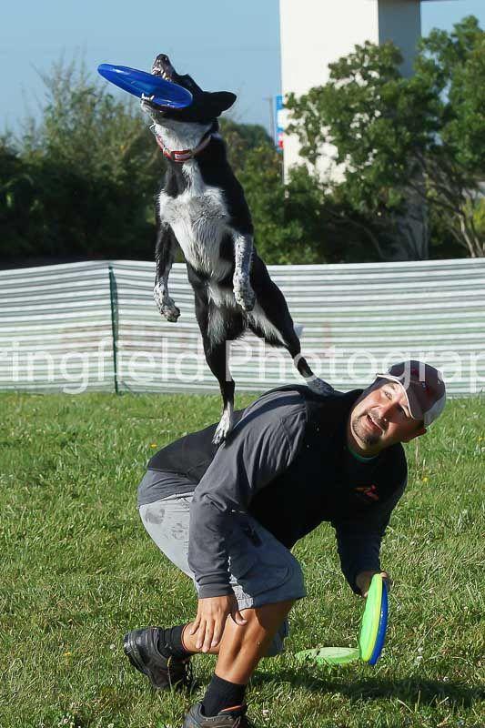 Eukanuba Performance Games 2017 Dog Show Photography Riding