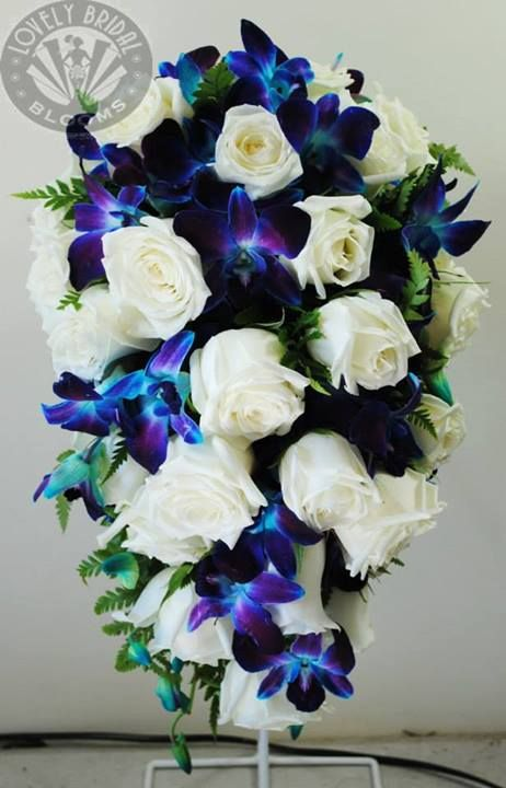 34 best images about breathtaking blue wedding flower for White and blue flower bouquet