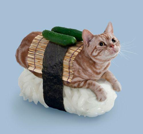 wear... sushi. via Beau Travail aime