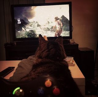 sometimes, i play video games with my cat
