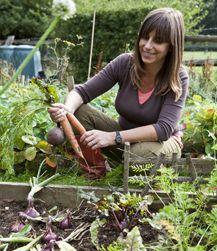 How To Grow Organic Food