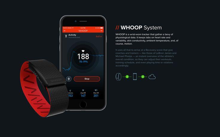 WHOOP App & Website on Behance