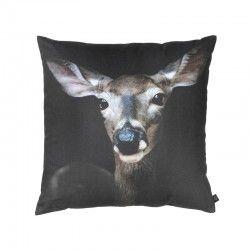 Deer Close-Up, 60x60 cm