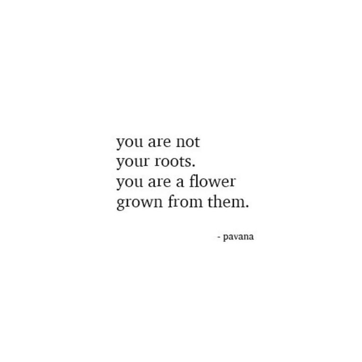 you are not your roots. you are a flower grown from them. wow...I really really love this and needed this so much