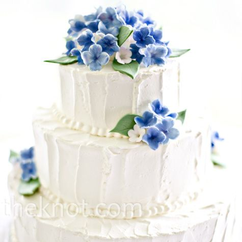 Hydrangea cake...promise I won't go overboard with the hydrangeas!: Sugar Hydrangeas, The Knot, Blue Hydrangeas, Cakes Ideas, Red Flower, Wedding Cakes, Blue Flower, Hydrangeas Cakes, Hands Paintings Sugar